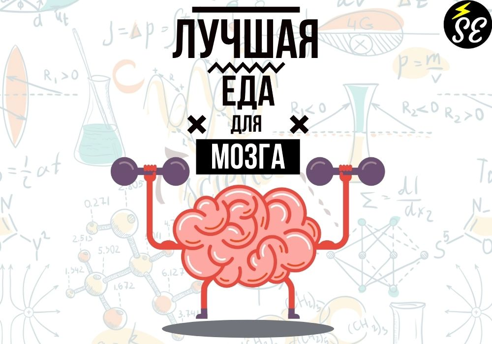 Еда, которая прокачает твой мозг перед экзаменом!